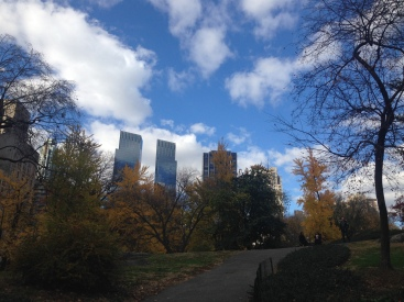 Caminando por el Central Park