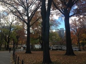Más Central Park